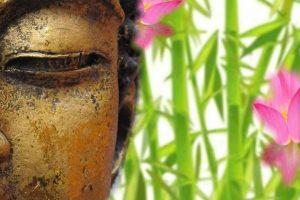 10 Frasi sagge sulla vita brevi per capirne il significato