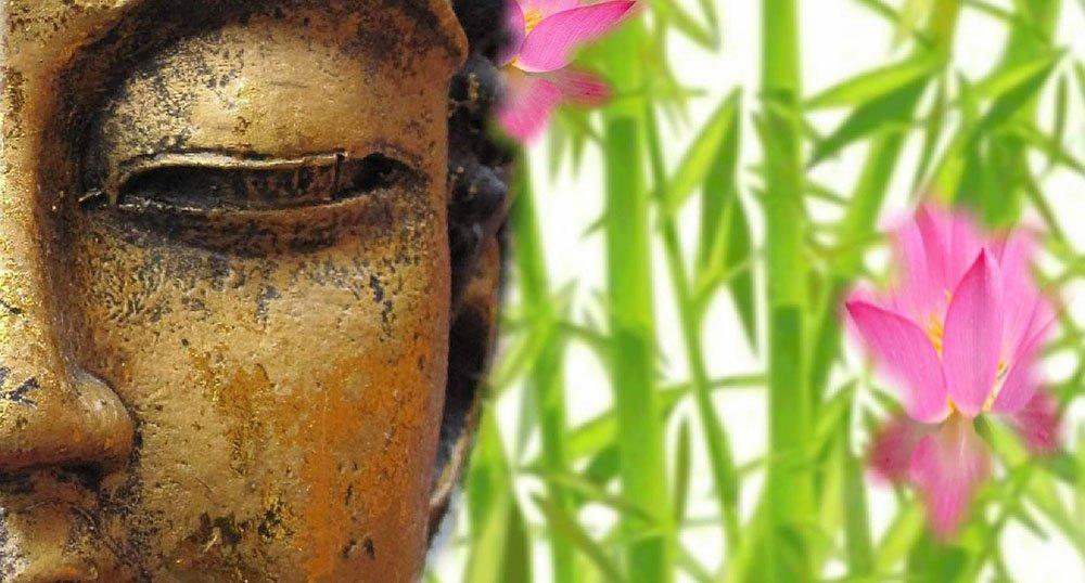 Frasi-sagge-sulla-vita-brevi 10 Frasi sagge sulla vita brevi per comprenderne il significato