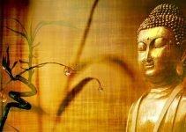 Frasi del Buddha: 15 aforismi buddisti