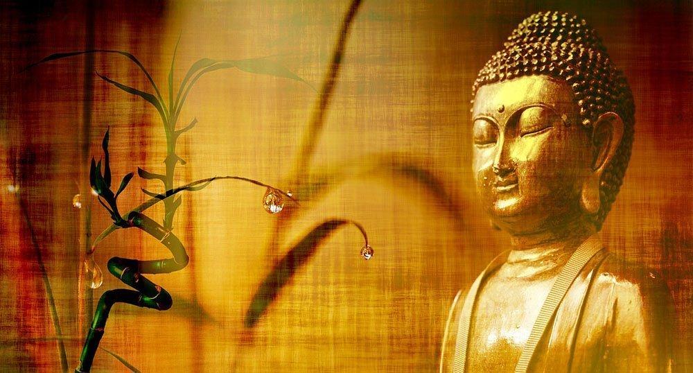 frasi-del-buddha Frasi del Buddha: 15 aforismi buddisti