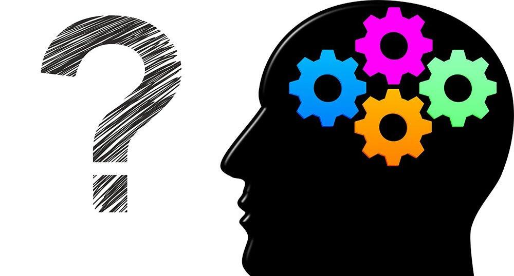 frasi-sullintelligenza Frasi sull'intelligenza: 15 aforismi